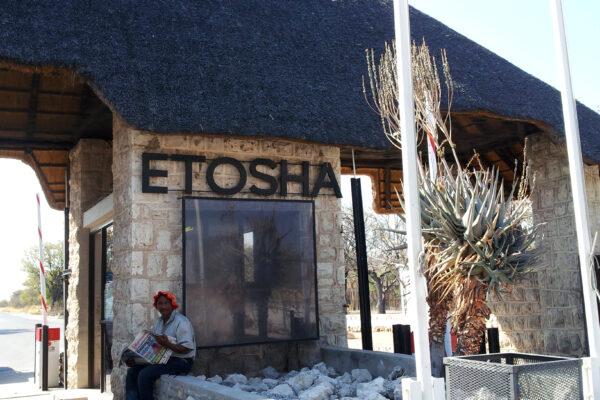Safari Etosha